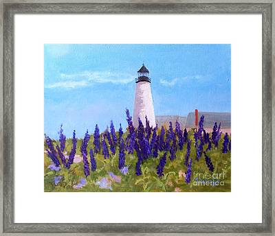 Lupins And Light Framed Print by Alicia Drakiotes