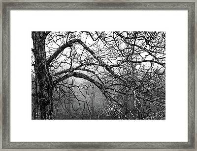 Framed Print featuring the photograph Lure Of Mystery by Karen Wiles