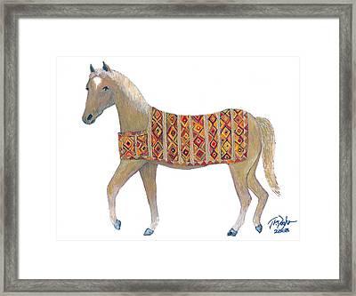 Luri Pony Framed Print