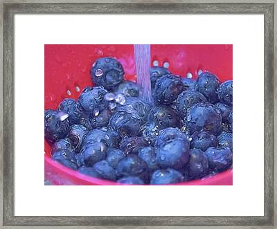 Luscious Berries Framed Print