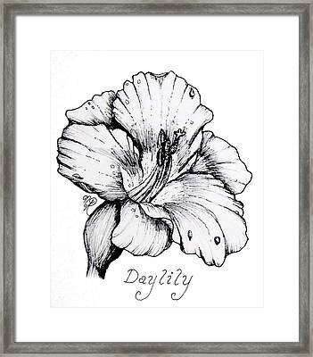 Luscious Daylily  Framed Print