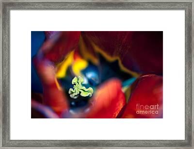 Luscious Kaleidoscope Framed Print by Venetta Archer