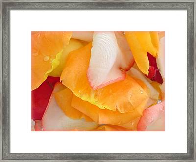 Luscious Framed Print by Kathy Bucari