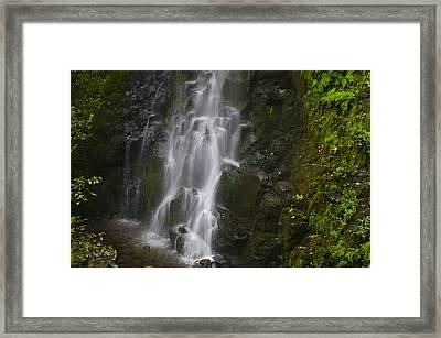 Lush Cascade Framed Print by Loree Johnson