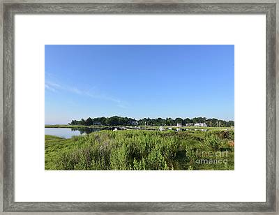 Lush Green Marsh Grass Along Duxbury Bay Framed Print by DejaVu Designs