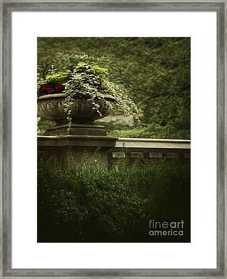 Lush Framed Print by Margie Hurwich