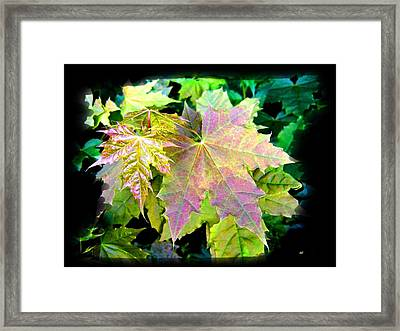 Framed Print featuring the mixed media Lush Spring Foliage by Will Borden