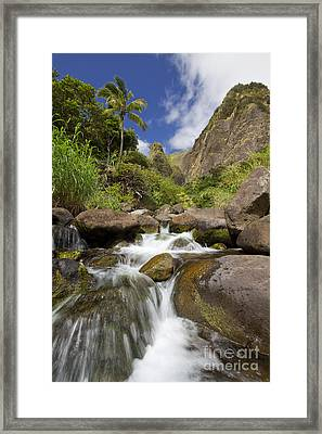 Lush Tropical Iao River Valley Framed Print