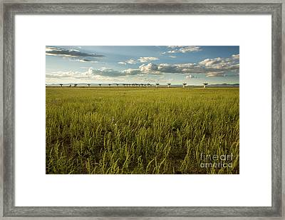 Lush Very Large Array Framed Print