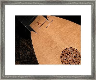 Lute Unstrung  Framed Print by Donna Stewart
