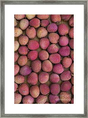 Lychee Fruit Framed Print by Tim Gainey