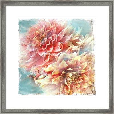 Lynia Dahlia Framed Print