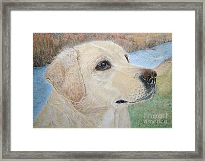 Lynwater Sunny Alex Framed Print by Yvonne Johnstone