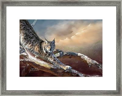 Lynx Spirit Framed Print by Carol Cavalaris