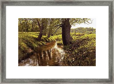Lyon Valley Creek Framed Print