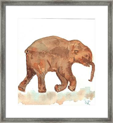Lyuba The Ice Baby Mammoth  Framed Print by Warren Thompson