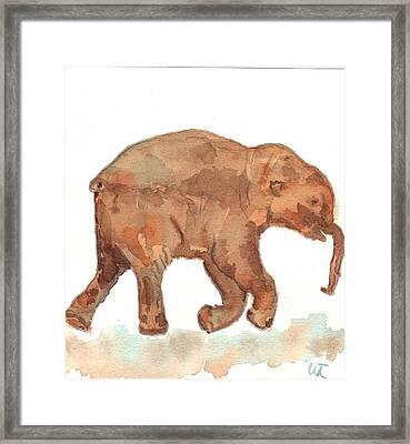 Lyuba The Ice Baby Mammoth  Framed Print