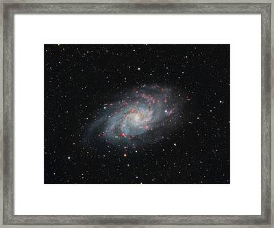 M33 - Triangulum Framed Print
