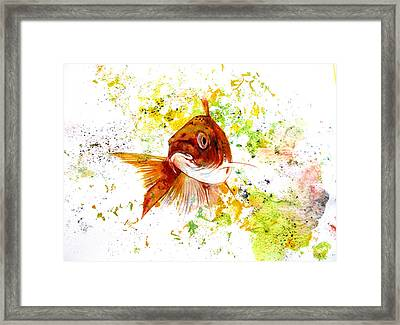 Framed Print featuring the drawing Ma Koi by Rita Silva