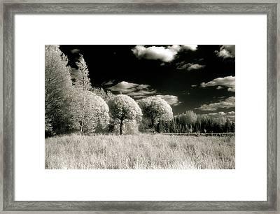 Maarala #1 Framed Print