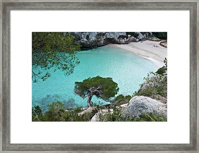 Macarelleta Turquoise Jewell By Pedro Cardona Framed Print