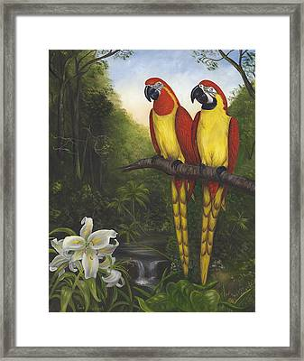 Macaws And Lillies Framed Print