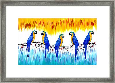 Macaws Framed Print by Cathy Jacobs