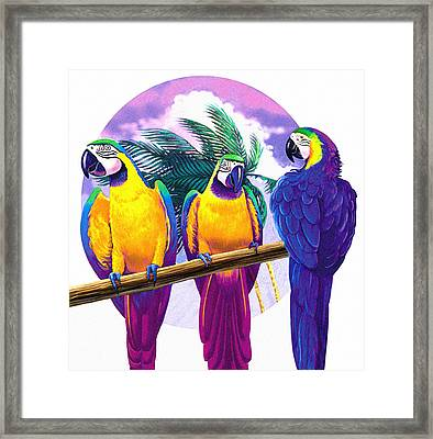 Macaws Framed Print by Valer Ian