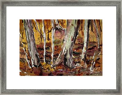 Framed Print featuring the painting Macconaquah Park Frizbee Creek Matted Glassed Framed by Charlie Spear