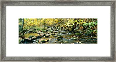Macedonia Brook State Park, Connecticut Framed Print