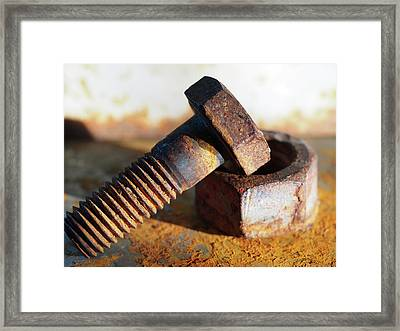 Framed Print featuring the photograph Machine Bolt by Tom Druin