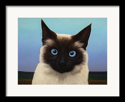 Siamese Cat Framed Prints
