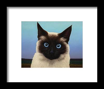 Cat Eyes Framed Prints