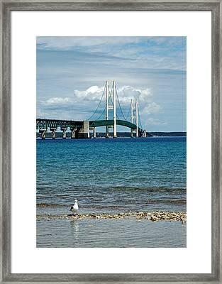 Framed Print featuring the photograph Mackinac Bridge With Seagull by LeeAnn McLaneGoetz McLaneGoetzStudioLLCcom