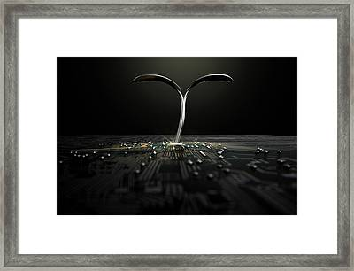 Macro Circuit Board With Futuristic Plant Framed Print by Allan Swart
