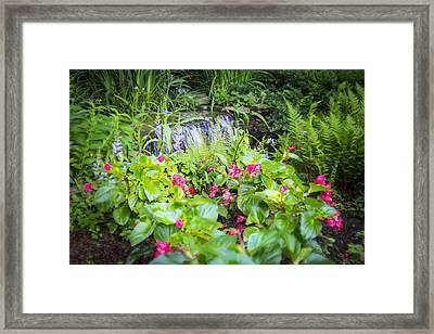 Macro Forest Framed Print
