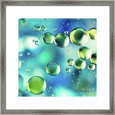 Macro Water Droplets Aquamarine Soft Green Citron And Blue Framed Print by Sharon Mau