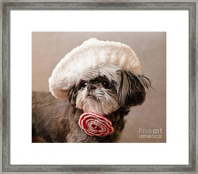Madam Scarlett Framed Print