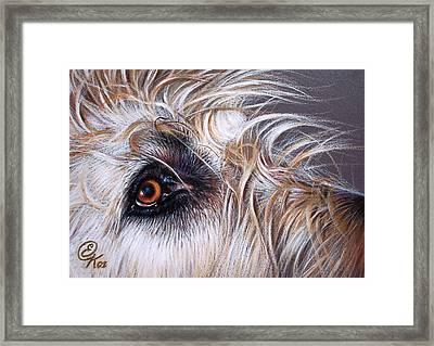 Maddie Framed Print
