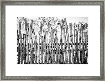 Framed Print featuring the photograph Made From Nature by Marilyn Hunt
