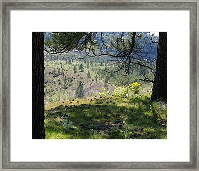 Framed Print featuring the photograph Made In The Shade by Ben Upham III