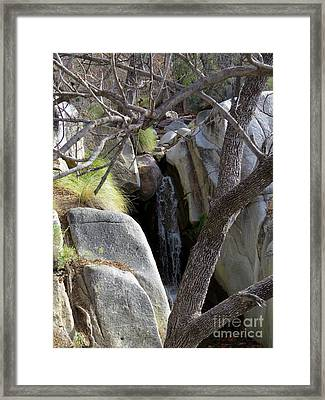 Madera Canyon Waterfall Framed Print by Feva Fotos