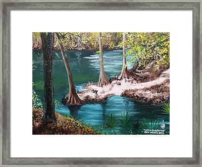 Madison Blue Springs Framed Print