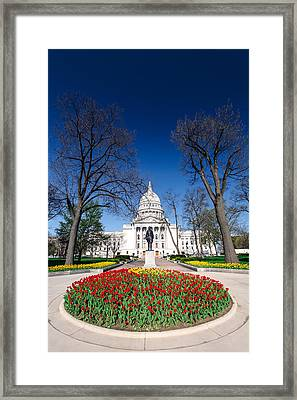 Madison Capitol Tulips Framed Print by Todd Klassy