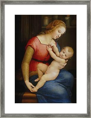 Madonna D'orleans Framed Print by Raphael