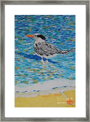 Maestro Of The Beach Framed Print