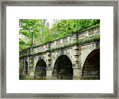 Magdalen's Ancient Bridge Framed Print