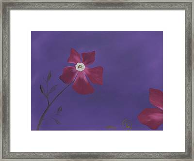 Magenta Flower On Plum Background Framed Print