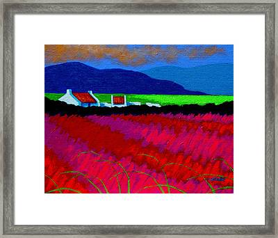 Magenta Meadow Framed Print by John  Nolan