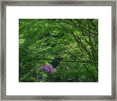 Magenta Splash Framed Print by Joseph Smith